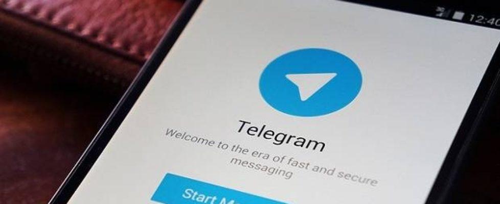 telegram app ddos attack