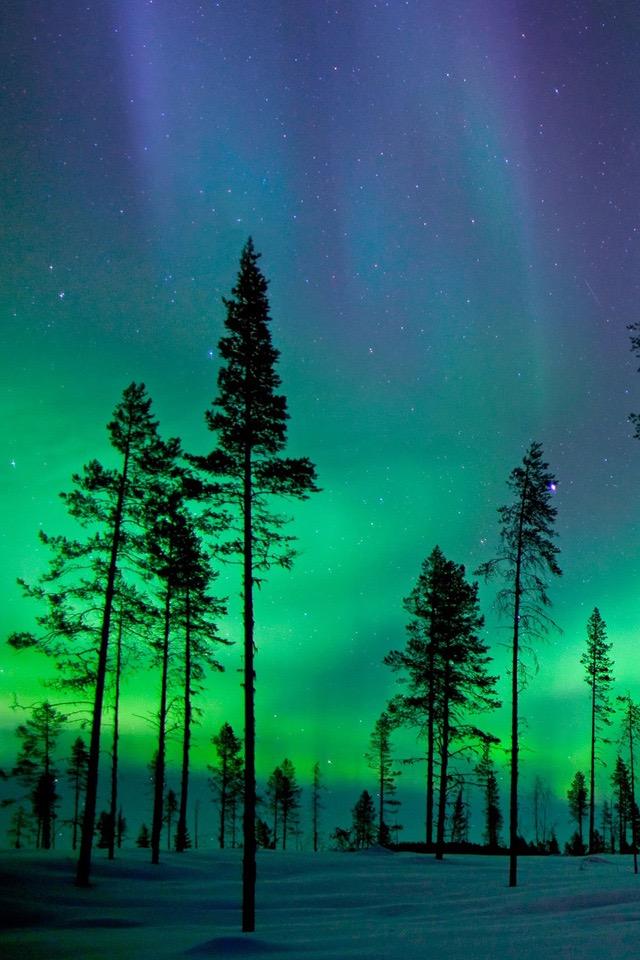 green effect beutiful nature wallpaper