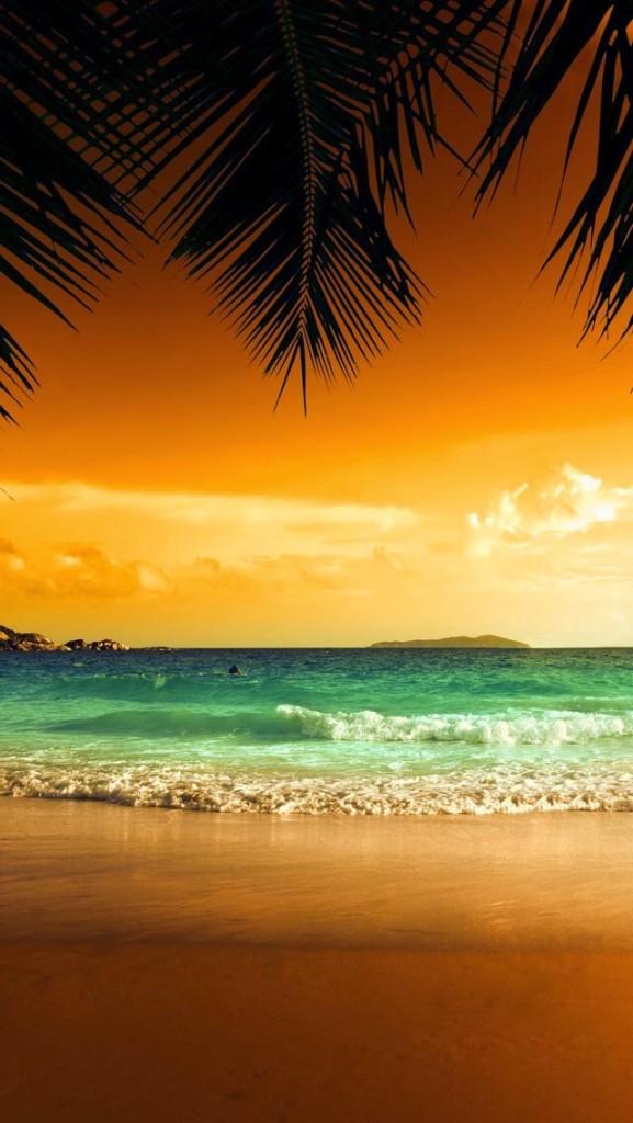 beach evening wallpaper