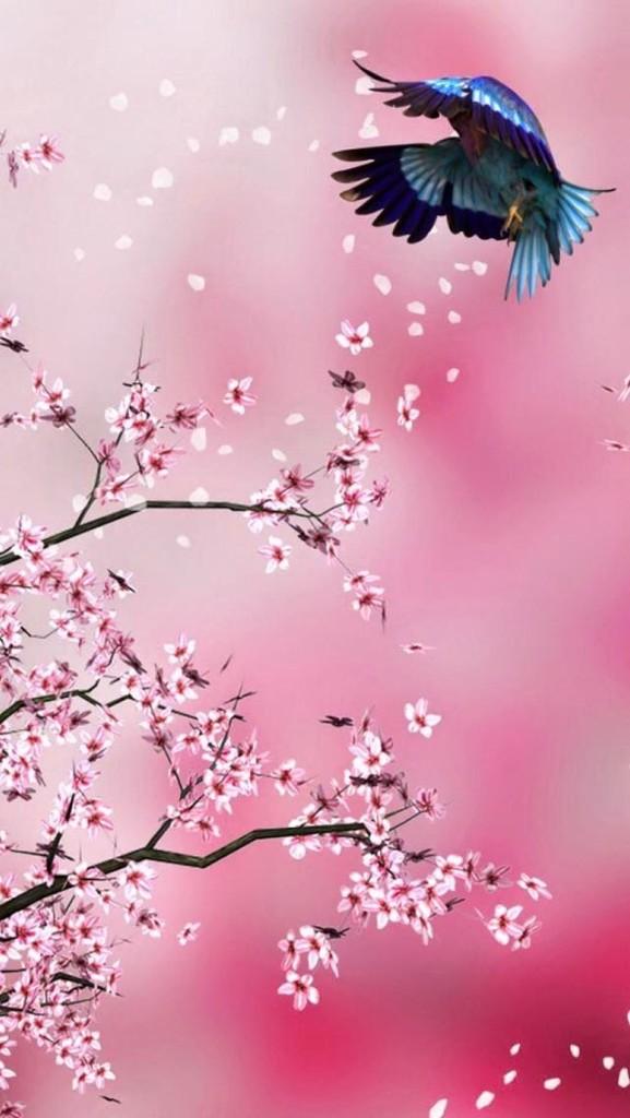 pink flower bird wallpaper