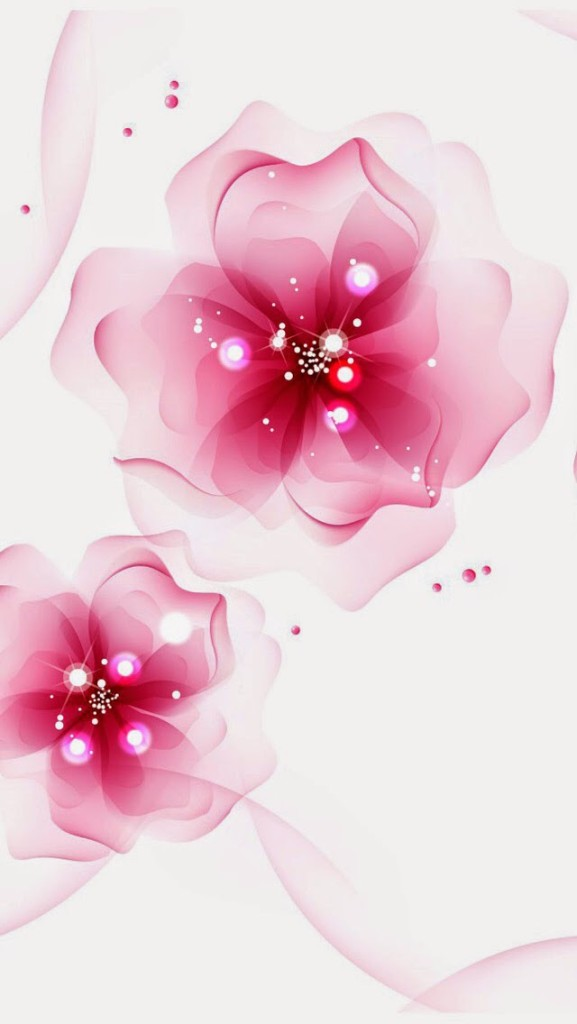 red color flower wallpaper