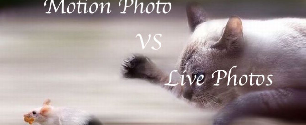 Live Photos vs Motion Photo