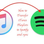 How to import iTunes Playlists to Spotify Music Library