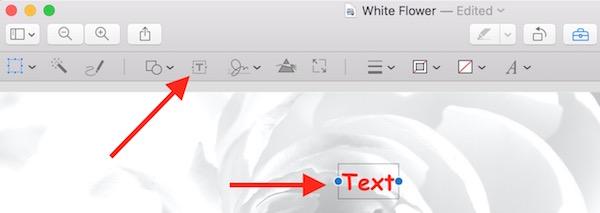 Adding text on image