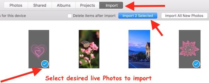 import Live Photos on mac OS X