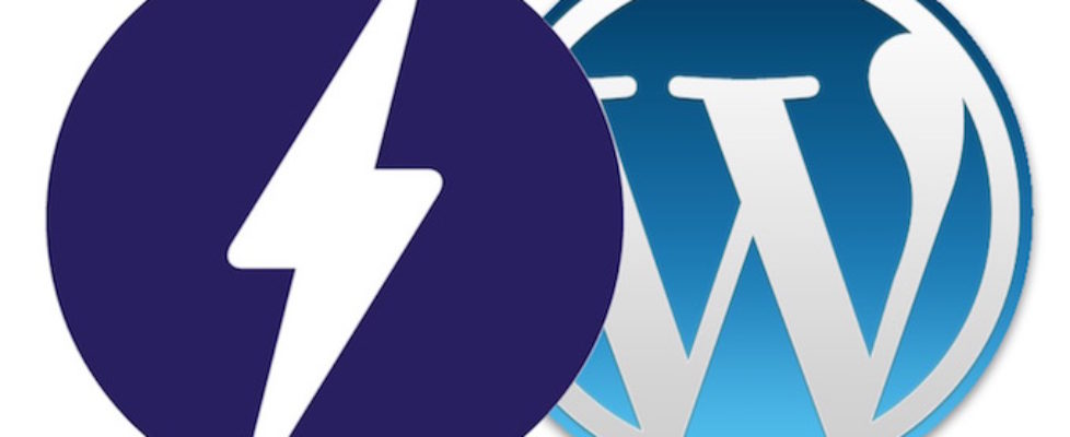 Wordpress AMP Guide