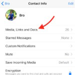 How to recover sent or received Images and videos via WhatsApp after you delete them from Phone