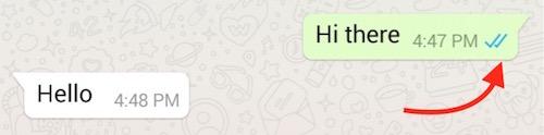 Read Receipt WhatsApp Plus