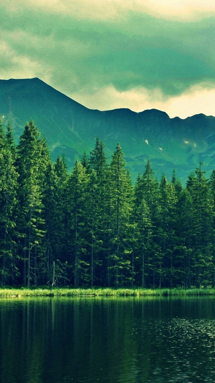 iPhone 6 green moutain wallpaper
