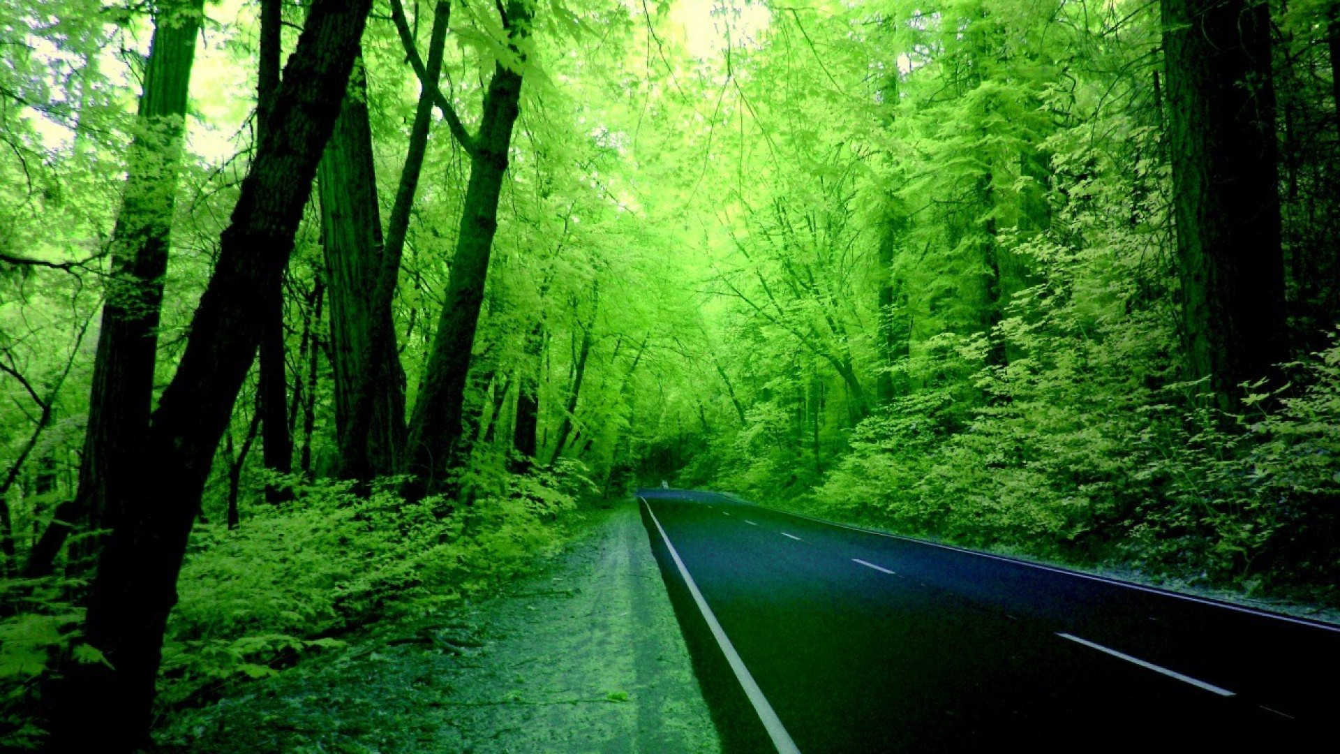 nature hd wallpapers green awesome computer