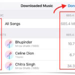 How to view music files size and delete songs on iPhone (iOS 10)