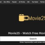 Everything You Should Know About Movie 25 Website