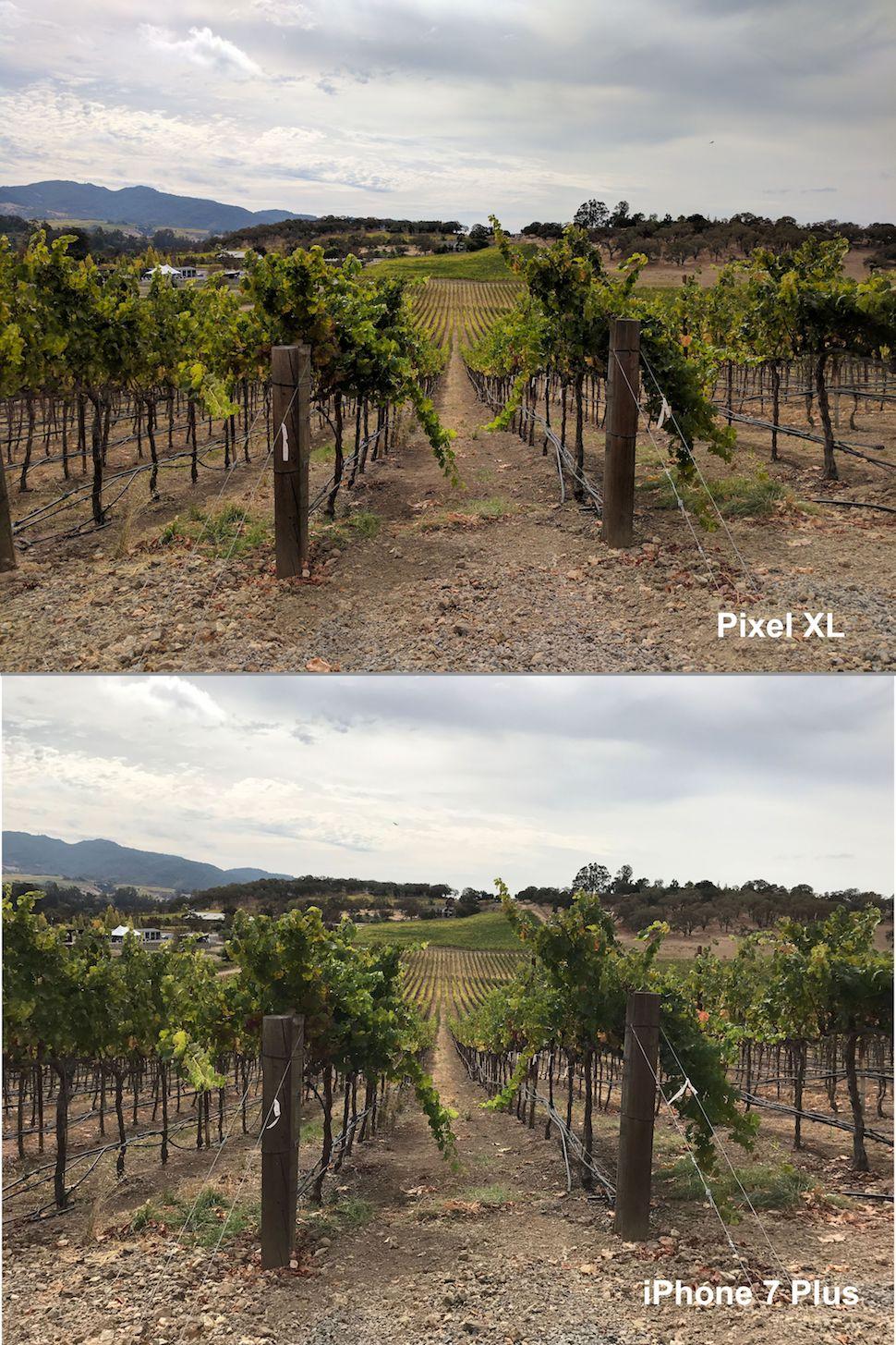pixel-xl-vs-iphone-7-plus-landscape