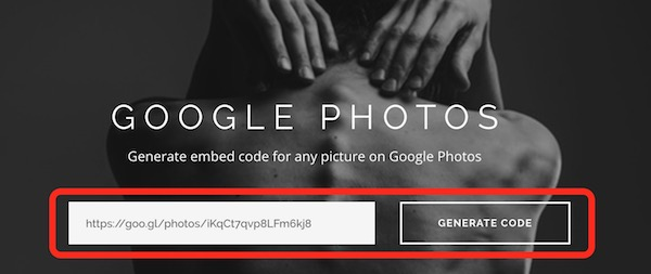 generate-google-photos-embed-code