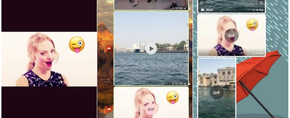 send-and-receive-gifs-in-whatsapp-via-iphone-and-android
